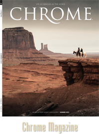 Chrome fall cover 2014